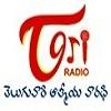Telugu One Radio