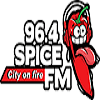 Spice fm bd