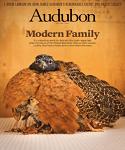 Audubon magazine in new york